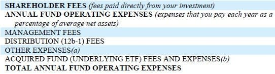 Prospectus expense table example